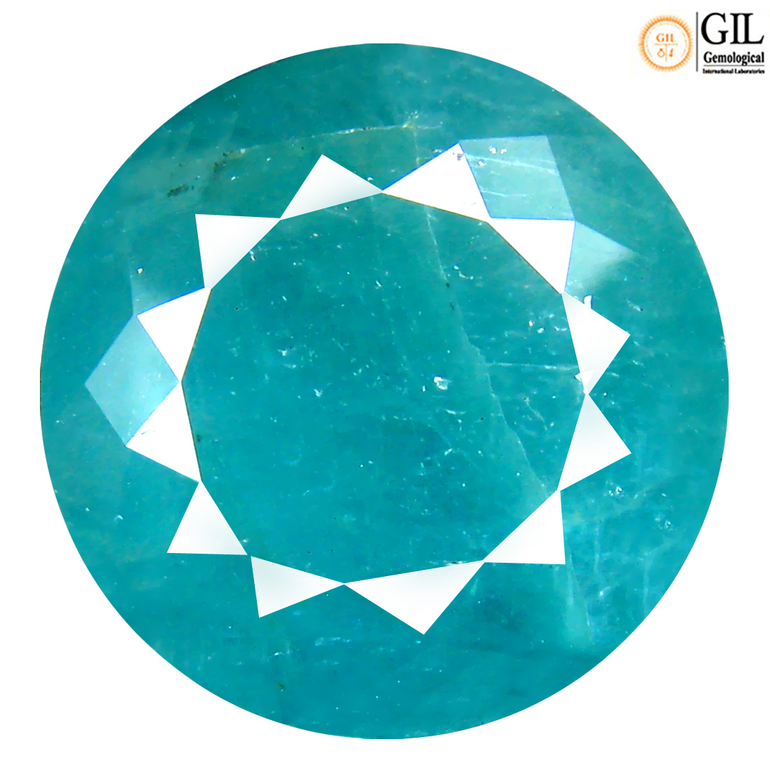 31.17 ct GIL CERTIFIED MAGNIFICENT FIRE ROUND CUT (19 X 19 MM) 100% NATURAL BLUISH GREEN GRANDIDIERITE LOOSE STONE